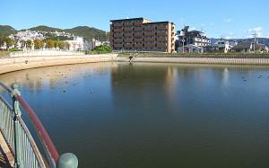 blog01山本新池公園.jpg