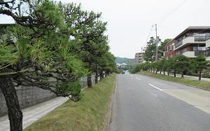 blog01離宮道.jpg