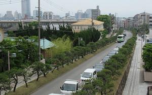 blog02離宮道.jpg