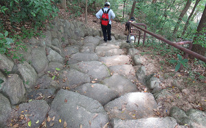 blog13天皇の階段.jpg