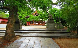 blog31藤森神社.jpg