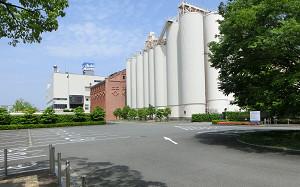 blog32アサヒビール.jpg