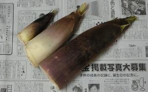 blog53平群.jpg