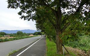 blog62蒜山.jpg