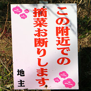 blog71.jpg