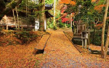 blog72今熊野観音寺.jpg
