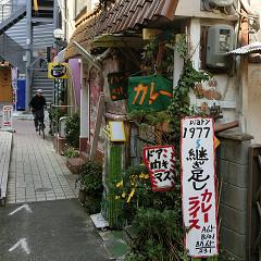 blog81しま.jpg