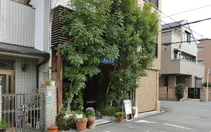 blog88華.jpg