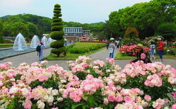 blog04須磨離宮公園.jpg
