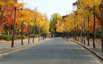 blog24大阪城.jpg
