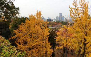 blog26大阪城.jpg