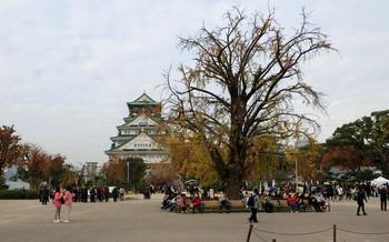 blog27大阪城.jpg