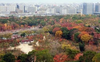 blog29大阪城.jpg