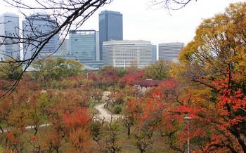blog32大阪城.jpg