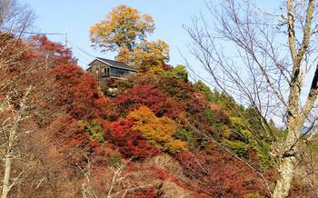 blog52吉野山.jpg