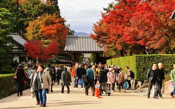 blog61東福寺.jpg
