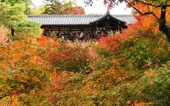 blog64東福寺.jpg