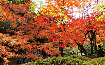 blog71今熊野観音寺.jpg