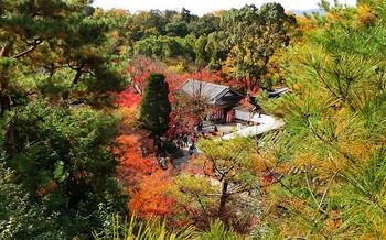 blog74今熊野観音寺.jpg